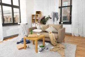 Santa Fe Carpet Cleaners - How To DIY Fabric Clean
