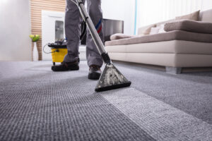 Santa Fe Carpet Cleaners - Will Professional Carpet Cleaning Remove Pet Stains and Urine Smell