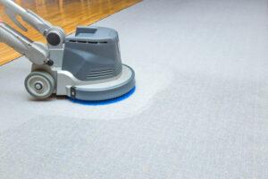 professional carpet cleaner Tesuque NM